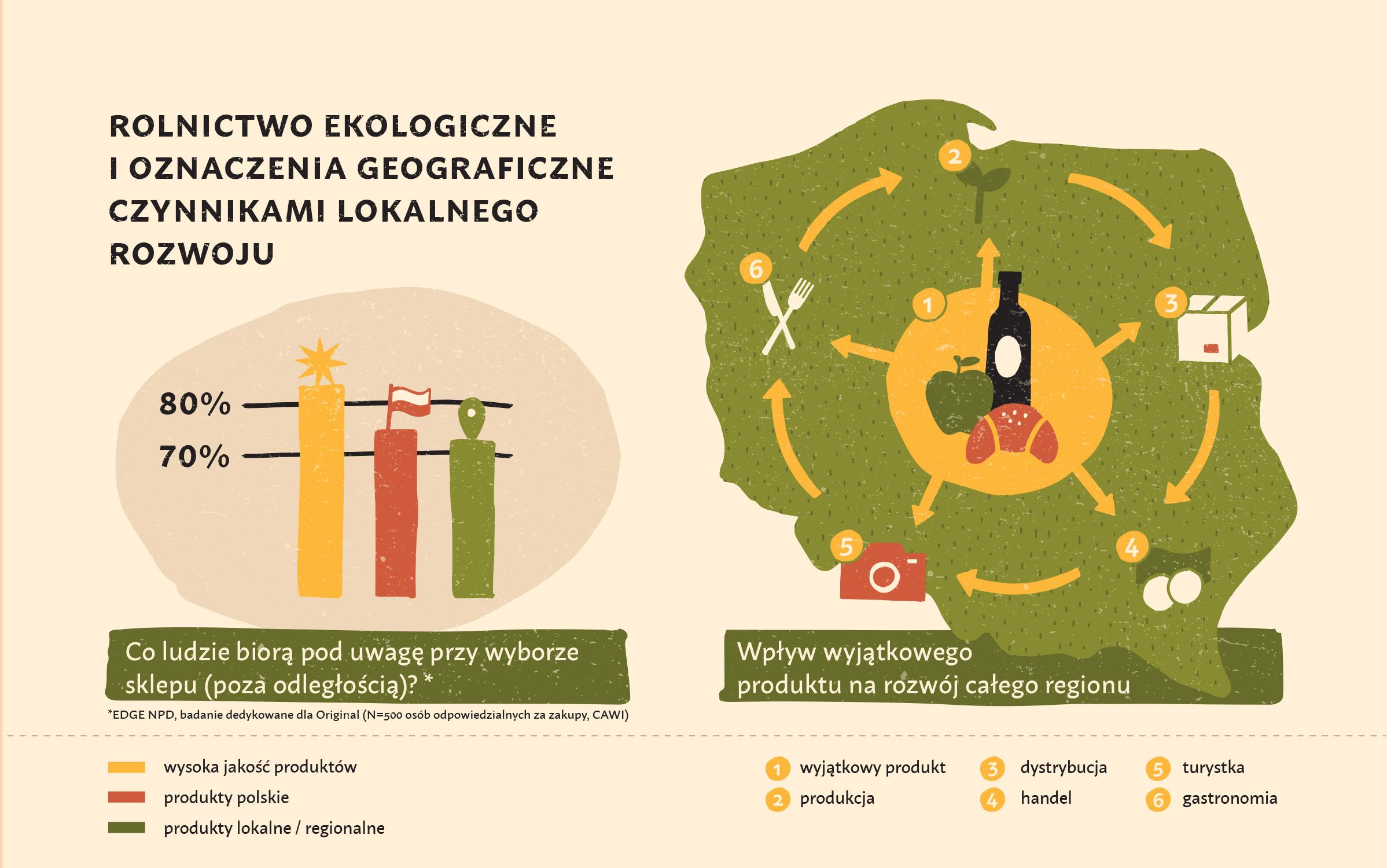 ostoja_infografiki_6